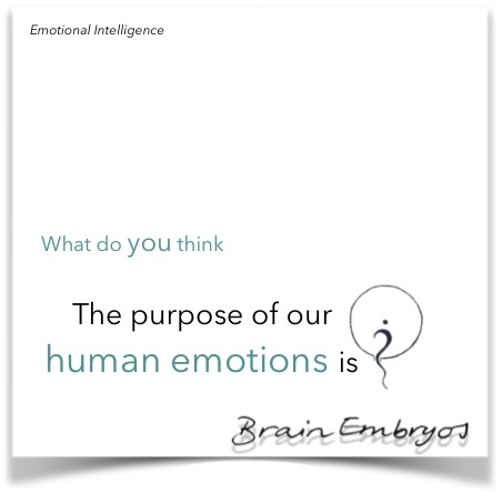 What do you think the purpose of human emotions is?