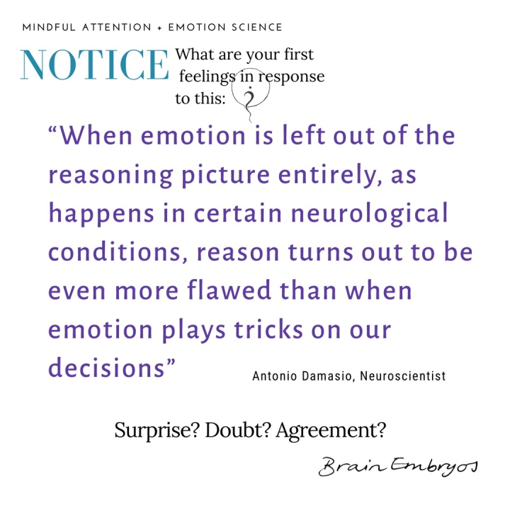 "Notice, what are your first feelings in response to this: ""When emotion is left out of the reasoning picture entirely, as happens in certain neurological conditions, reason turns out to be even more flawed than when emotion plays tricks on our decisions'- Antonio Damasio, Neuroscientist. Surprise? Doubt? Agreement?"
