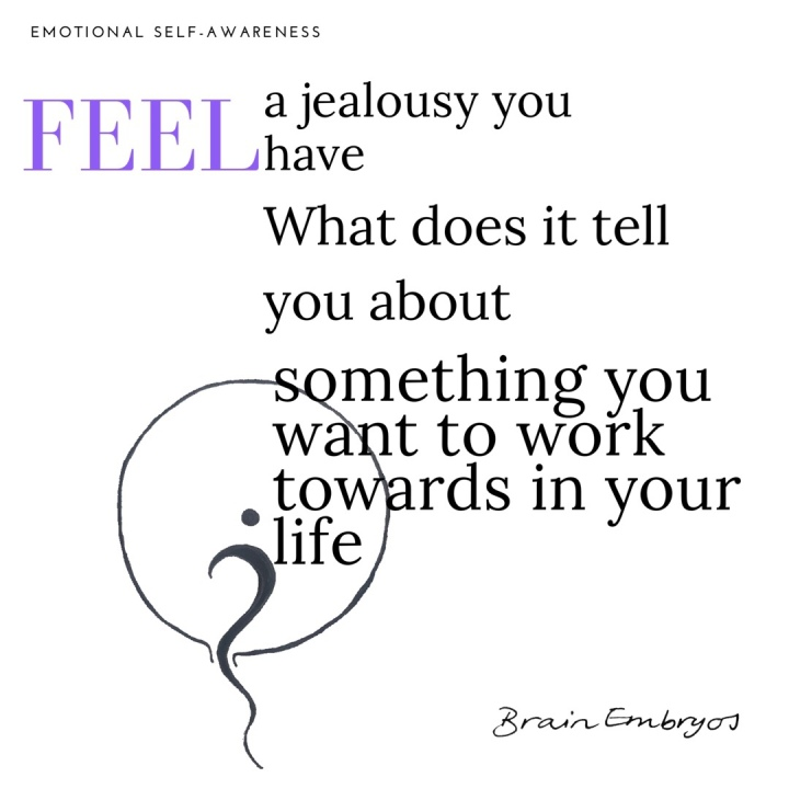 Feel a jealousy you have. What does it tell you about what you want to work towards in your life?